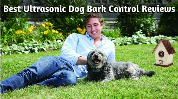 Best-Ultrasonic-Dog-Bark-Control-Reviews