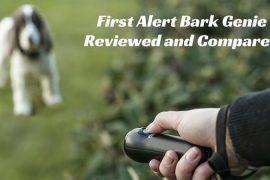 First Alert Bark Genie Reviewed and Compared (1)