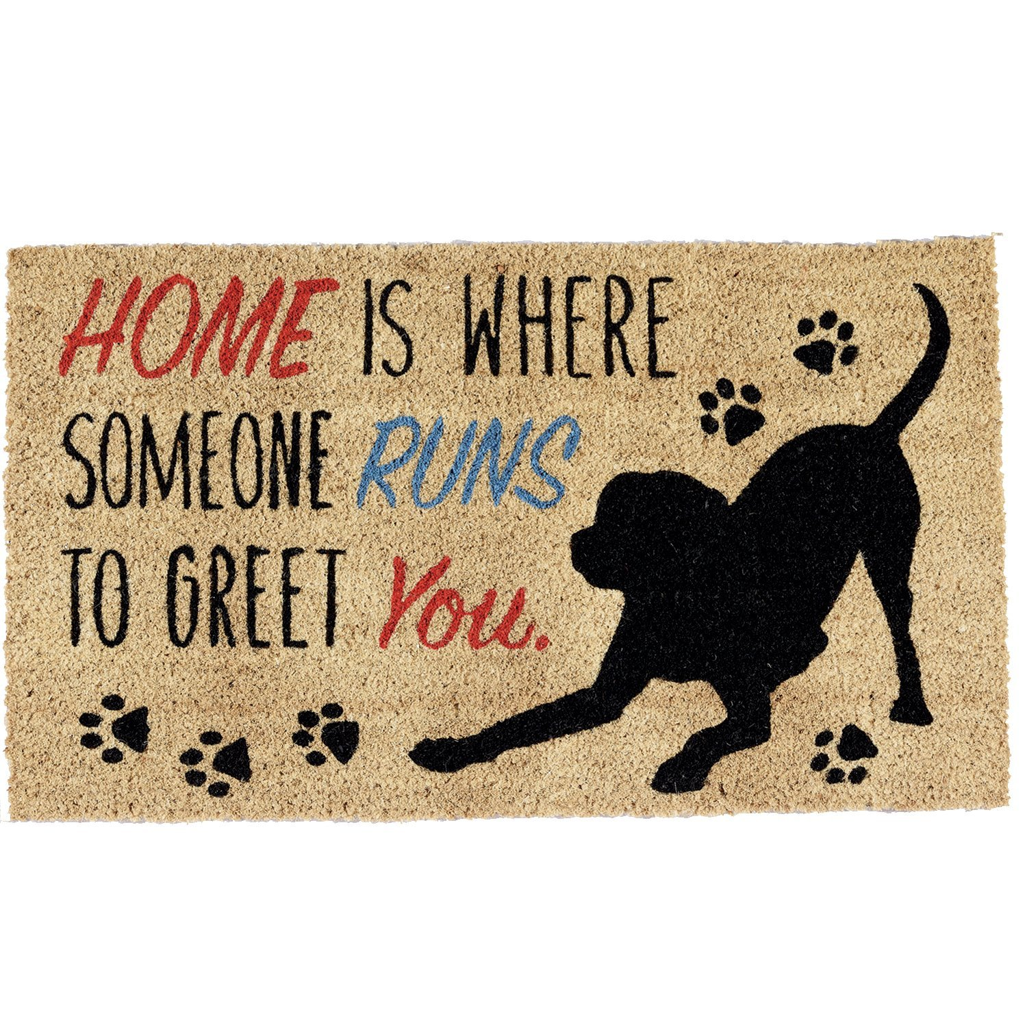 Best Outdoor Doormat For Dogs