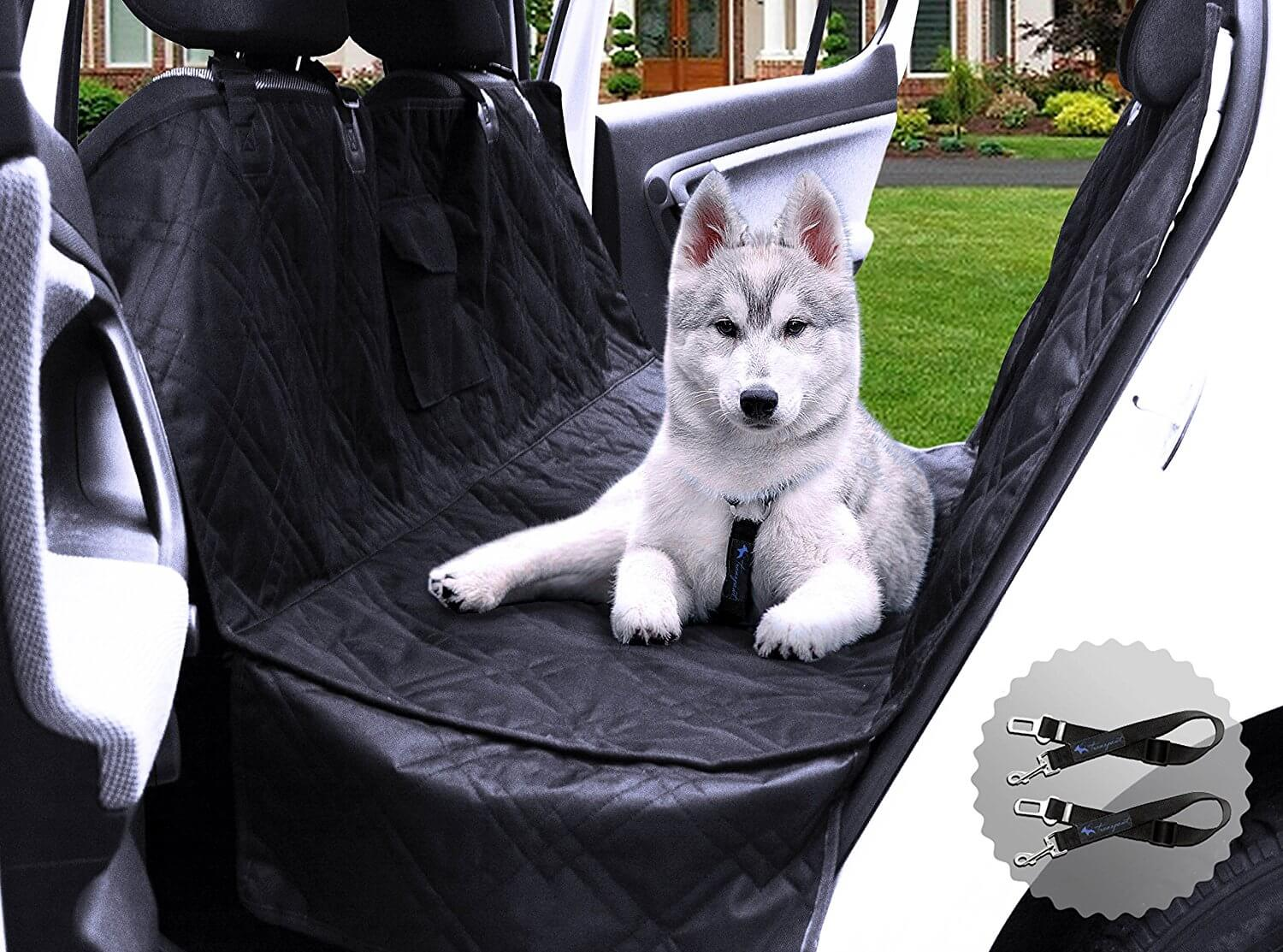 Best Seat Covers for Dog Hair: Take a Car Ride with Your Companion