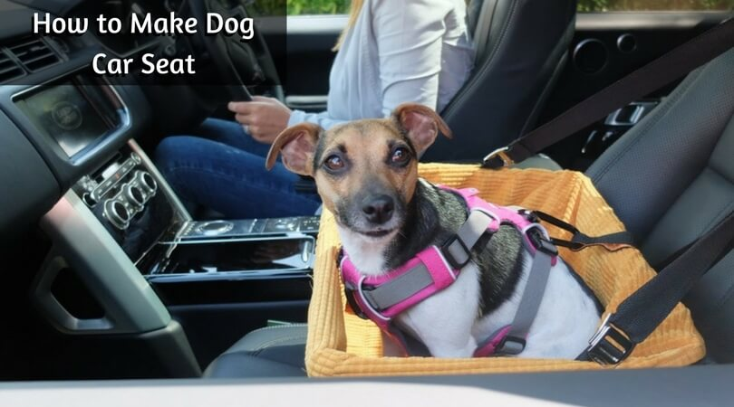How to Make Dog Car Seat
