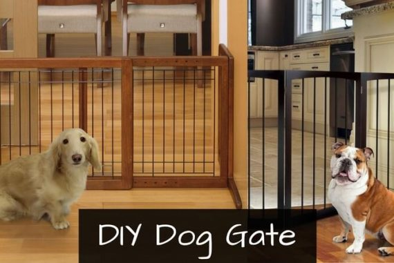 How To Make A Dog Gate Out Of Cardboard Diy Dog Gate Guide