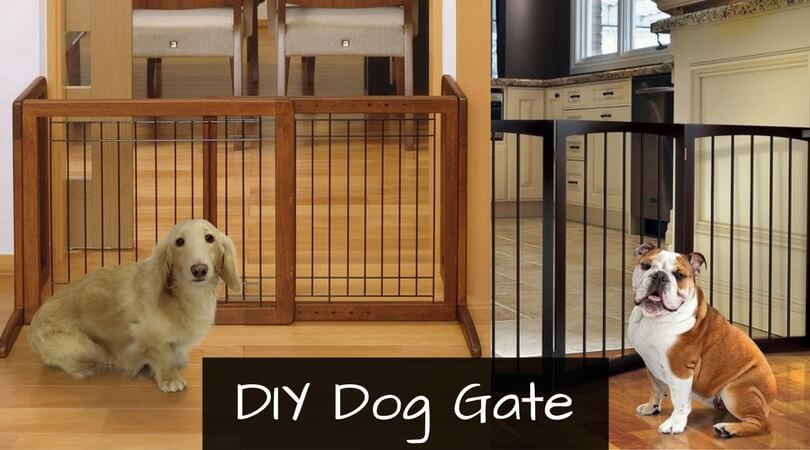 How to Make a Dog Gate Out of Cardboard? : DIY Dog Gate Guide