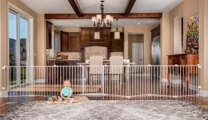 Regalo Adjustable Gate and Play Yard, 2-In-1