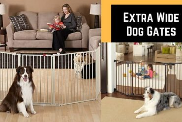 extra wide dog gates large openings