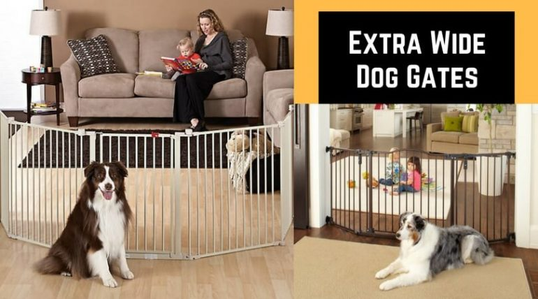Best Dog Gates For Wide Openings Choose Perfect Tall And Wide Gates