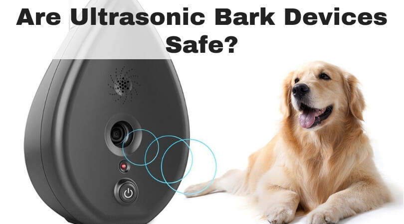 Are Ultrasonic Bark Devices Safe_