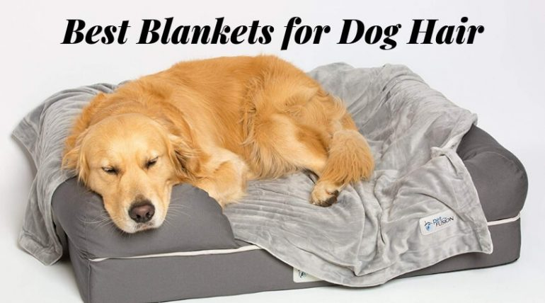 Best Blankets For Dog Hair Top Pet Resistant Of 2019