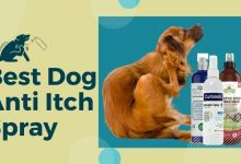Best Dog Anti Itch Spray